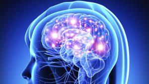 brain.jpg-min